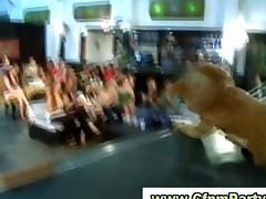 Doggystyle Fucking In Cfnm Party