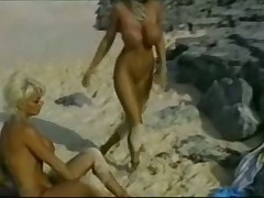 Bikini babes from the beach and one cocks